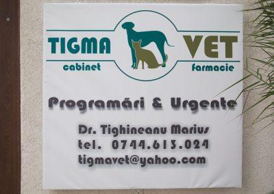 TigmaVet-2